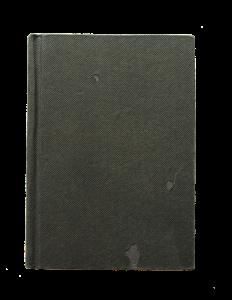 lesmian diary