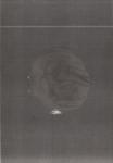 Monotype, 30/21 cm, 2011